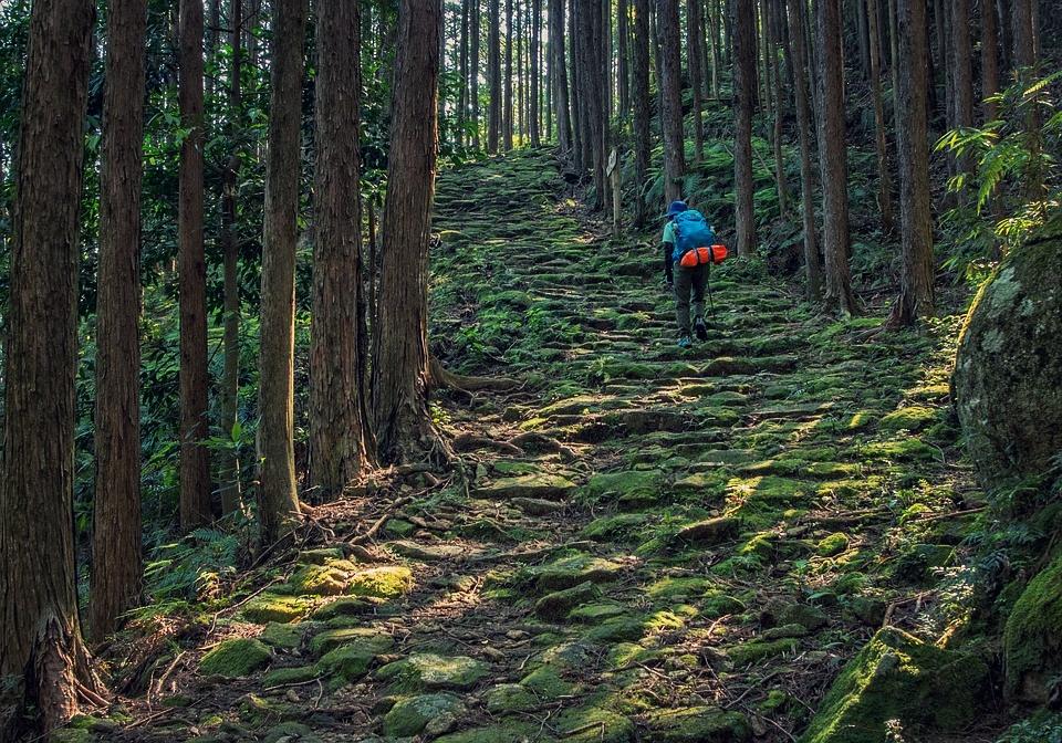kumano-ancient-road-2389157_960_720.jpg