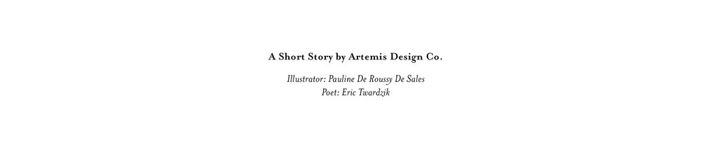 Artemis Design Co. Short Story issuu no bleed.jpg