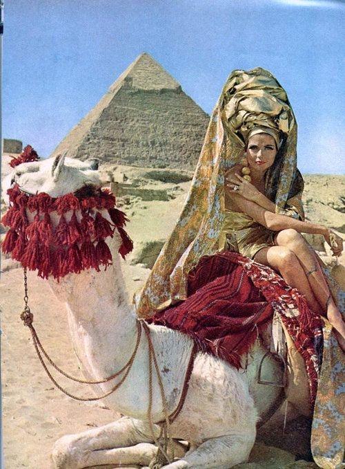 world of- camel woman.jpg