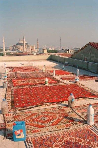 rug roof scene for world of.jpg