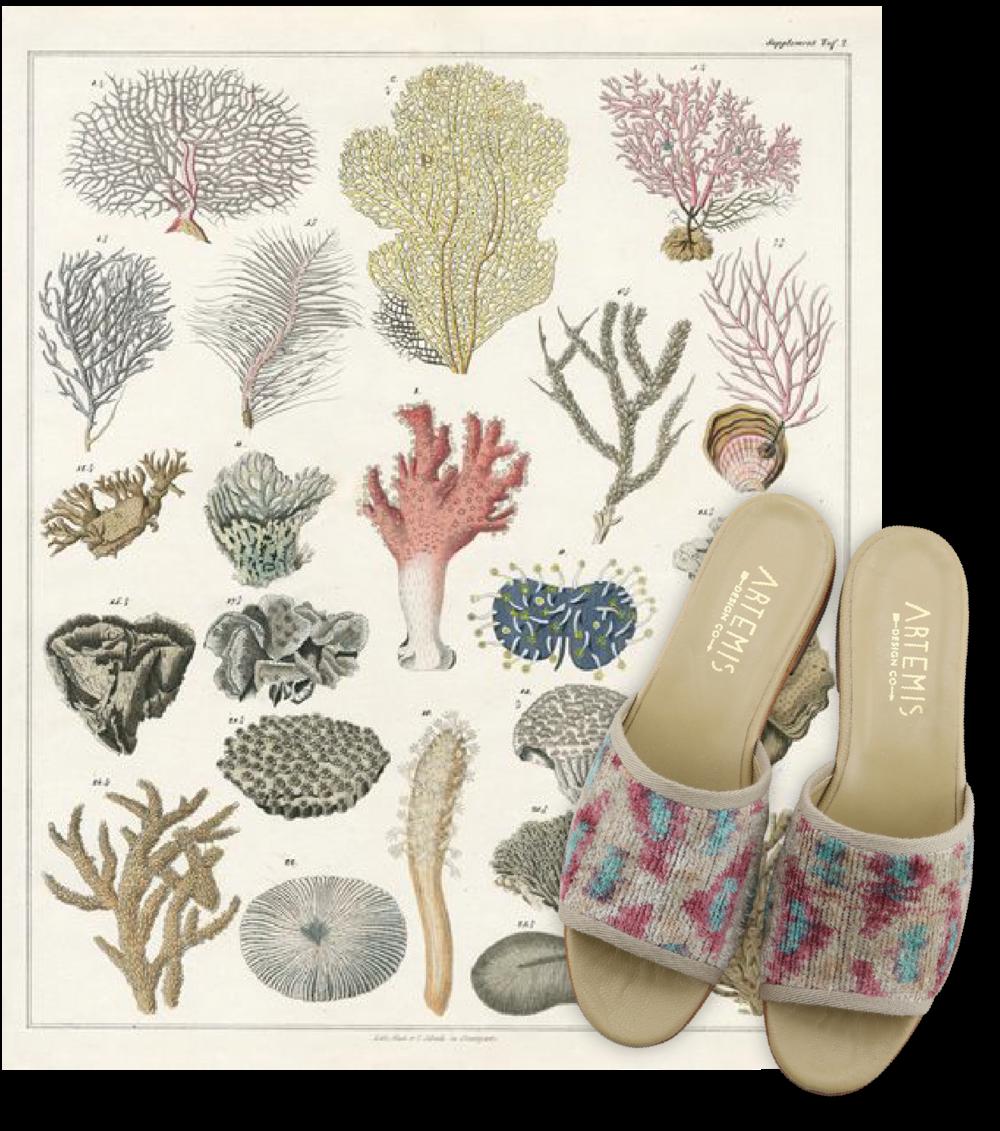 Coral Reef Print Velvet Mules