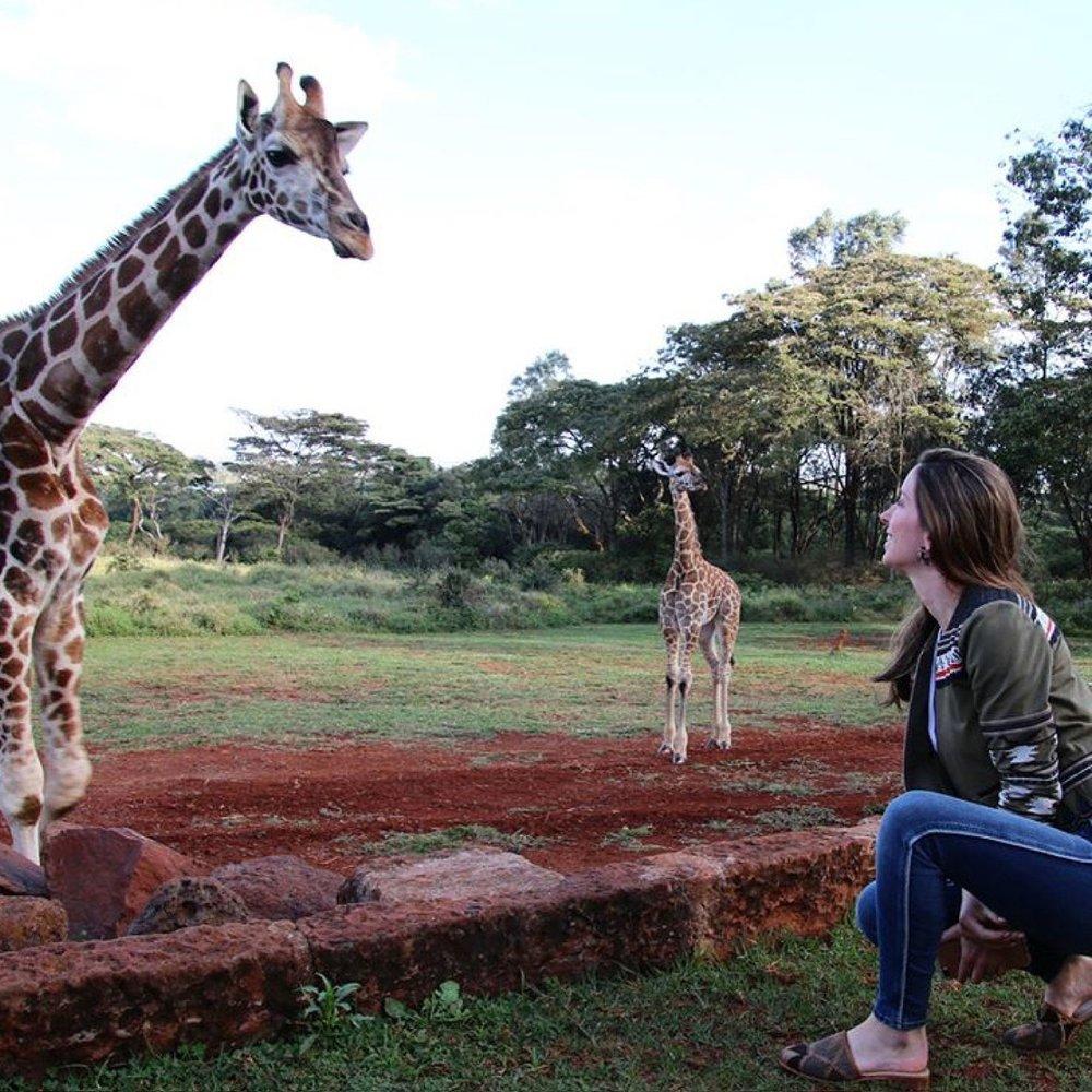 @jimedia at Giraffe Manor