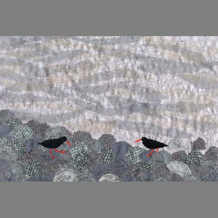 Converging Oystercatchers