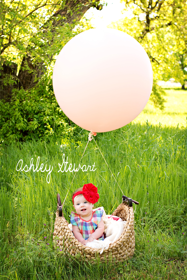 Ashley Stewart Photography Half Birthday Babe 2
