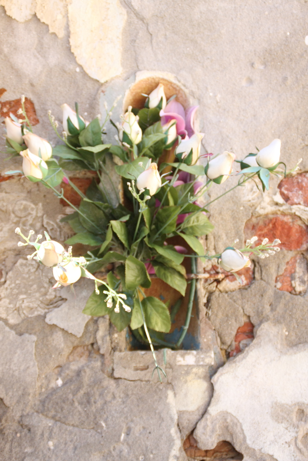 Flowers in Wall by Shrine