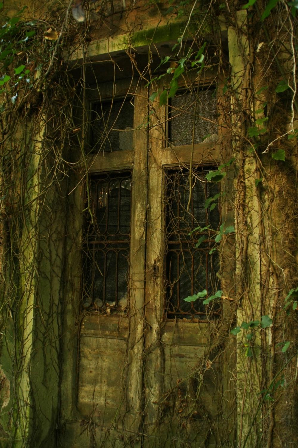a door 2.JPG