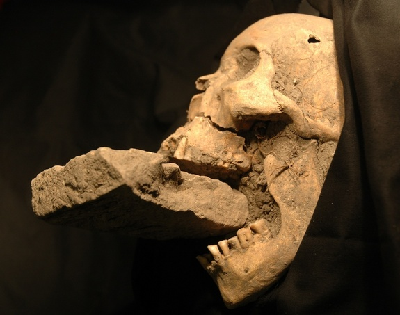 skull with brick.jpg