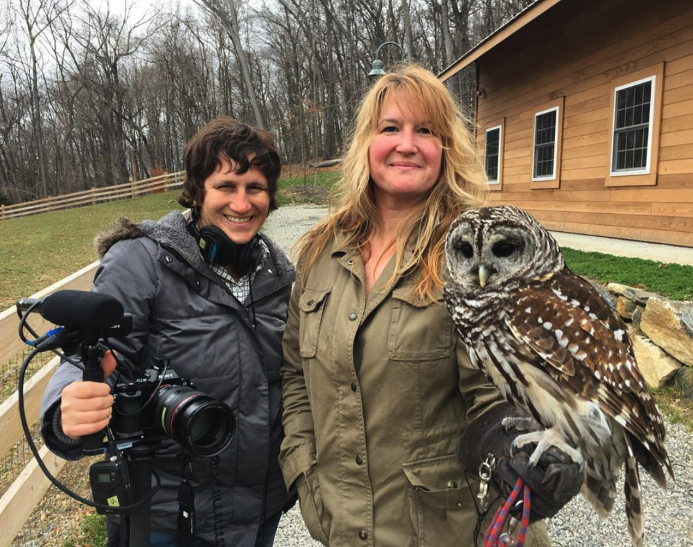 Filming Owls