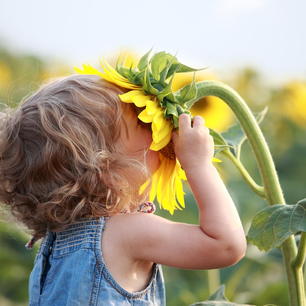 kidsmellingflower.jpg