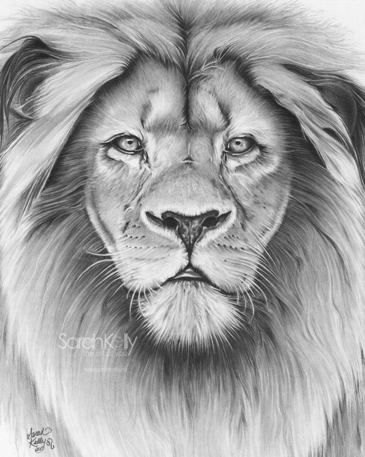 Copy of The Leo