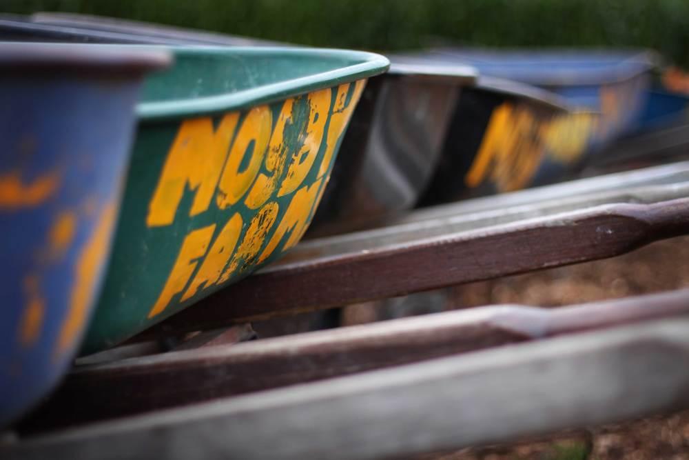 wheelbarrows.jpg