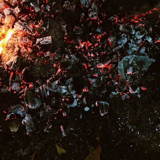 Backyard fire embers. Only nearly burned my hand for this photo, because, art. 🎄⛄️✨