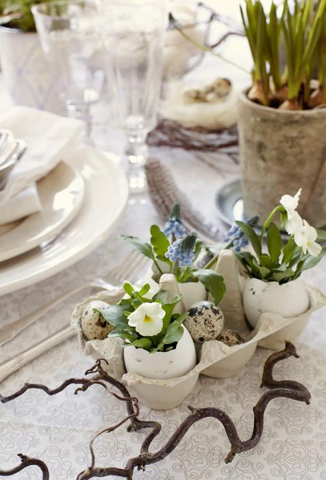 Underbara äggskal med penséer och pärlhyacint i. Foto: homebunch.com