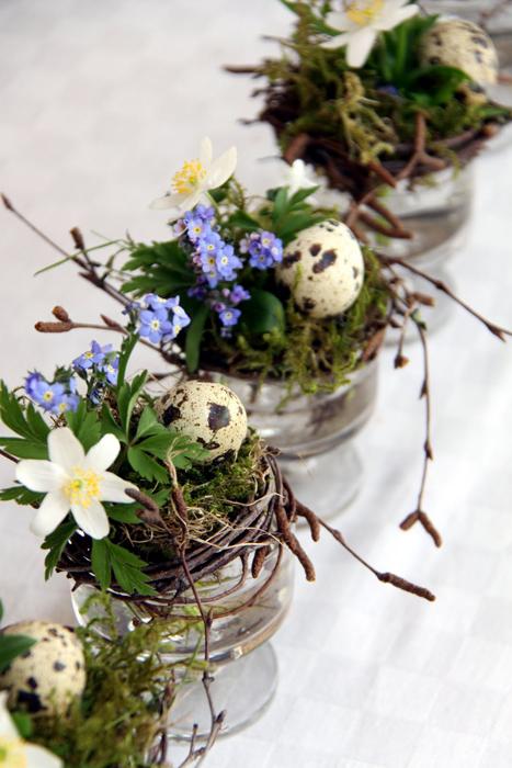 Vitsippa, mossa och små glas. Foto:campbellsoupdiary.blogspot.se