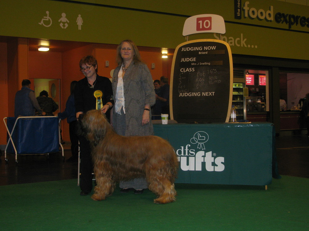 Best of Breed Crufts 2011