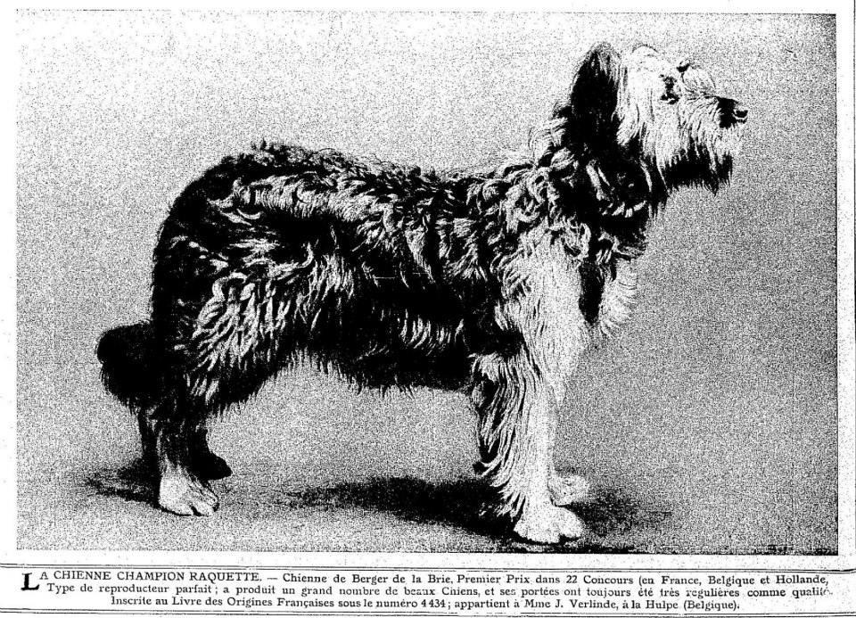 Ch Raquette de la Hulpe 1906.jpg