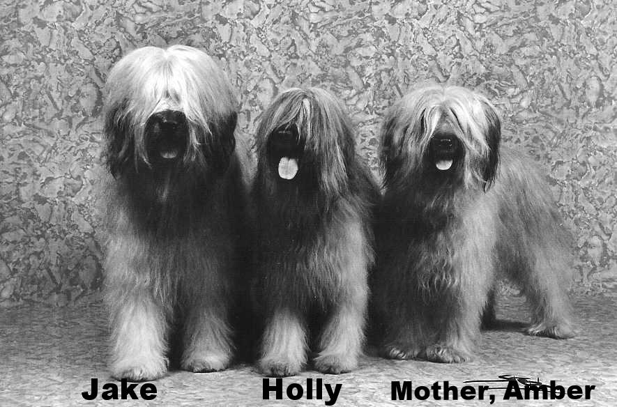 Jake,Holly,Amber.jpg