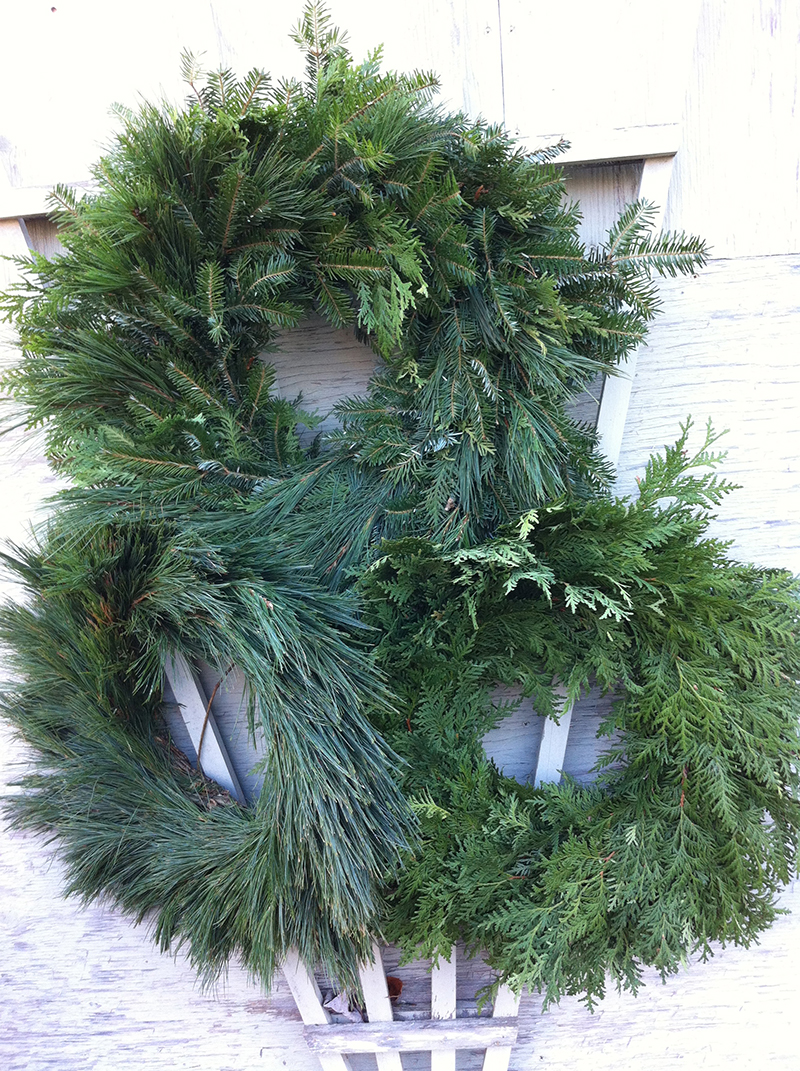 Fir, cedar and pine wreaths, plain or decorated.