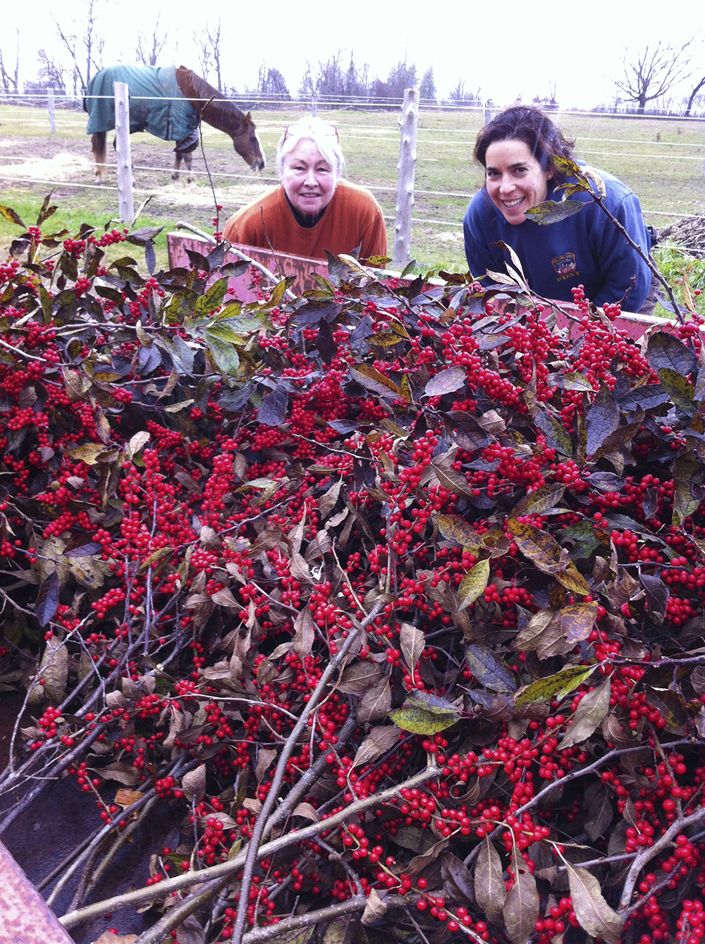 Jill and Gina bring in the branches.