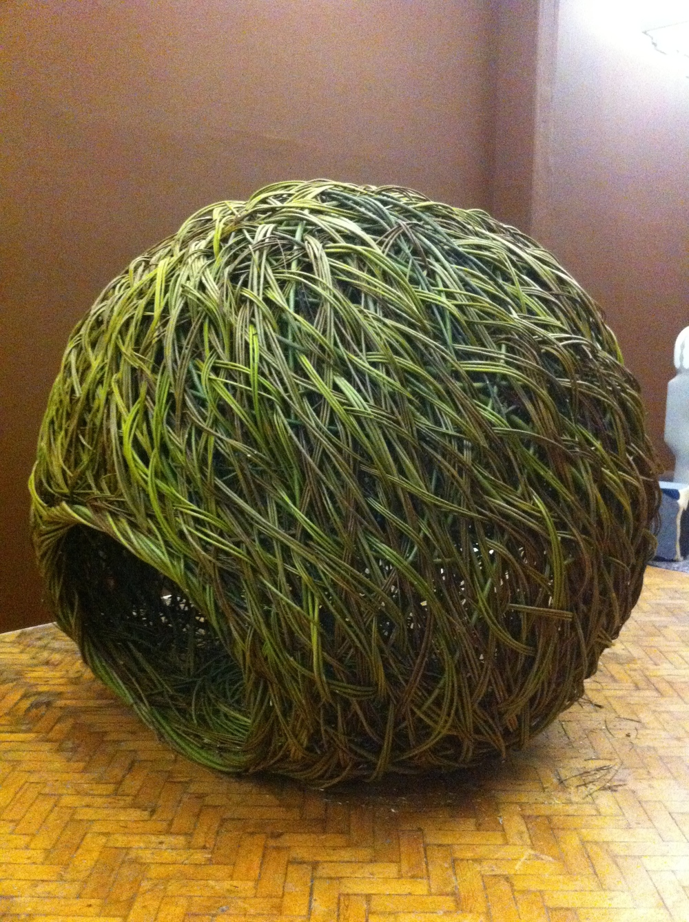 Some of Mel's willow sculpture.