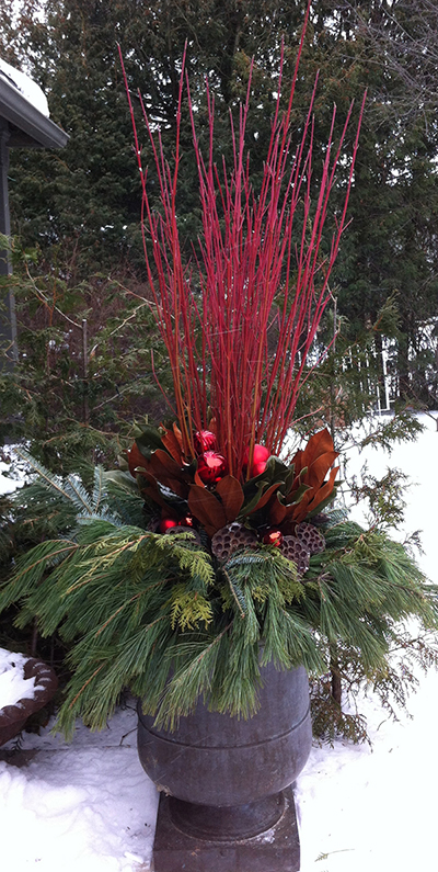 Cardinal Dogwood shines it's brilliant red light and stands out brightly against a snowy backdrop. Combined here with red accents, magnolia, lotus pods and mixed evergreens. A custom design by The Branch Ranch.