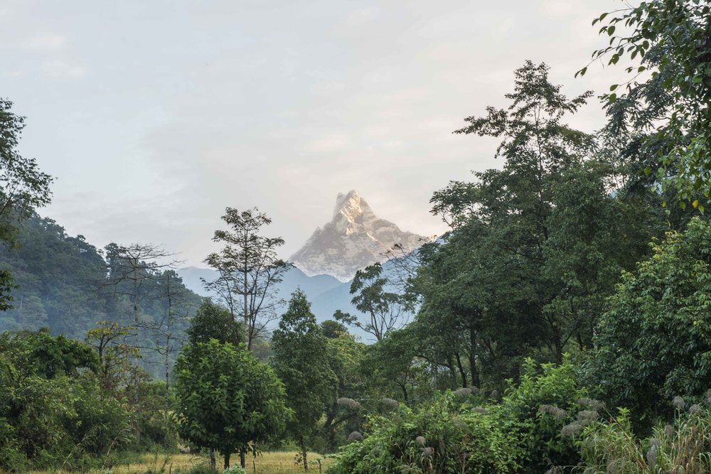 View of Machapuchare, which means fish tail.