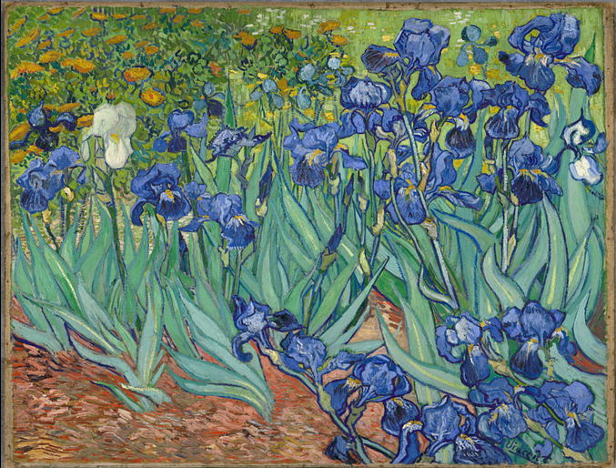 Irises, Vincent van Gogh, oil on canvas, 1889