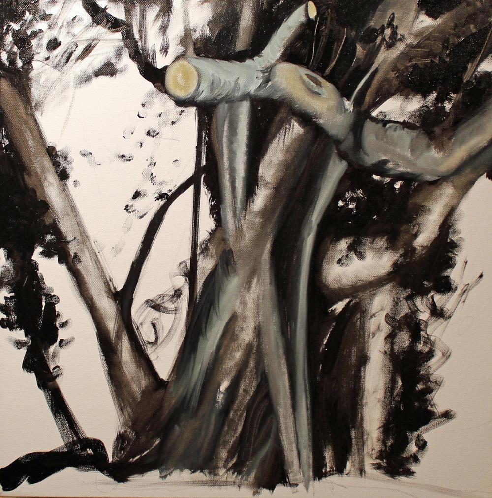 tree_nfyhrie