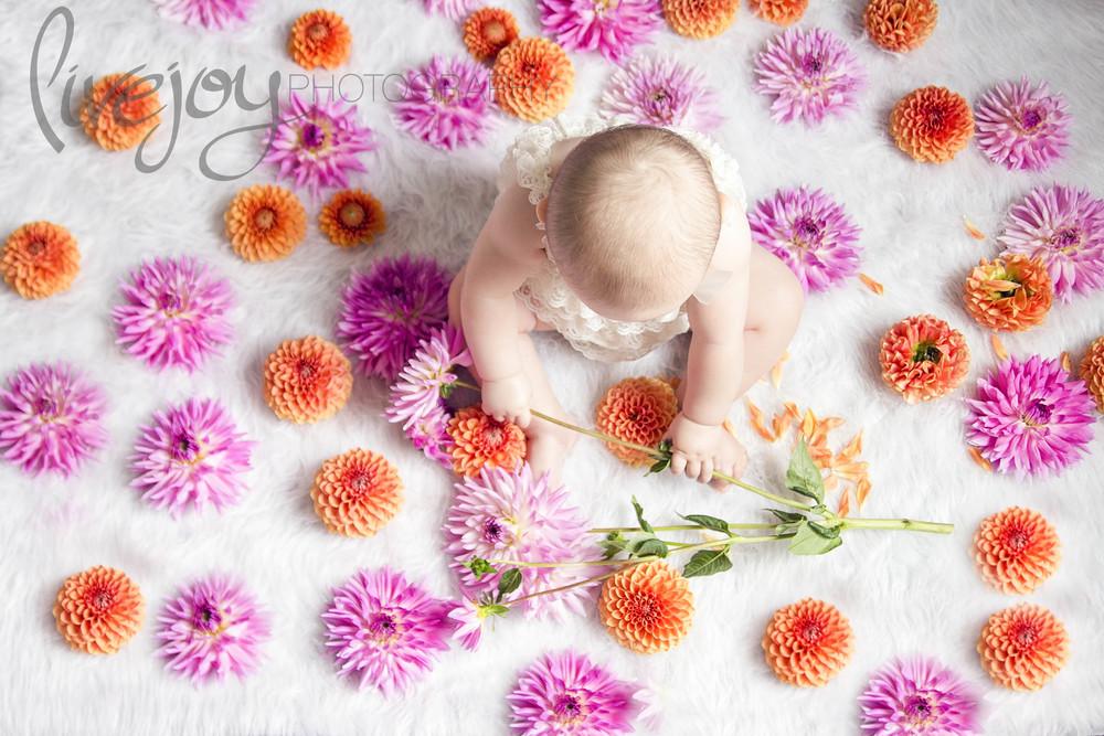 Darya6SocialMedia24.jpg