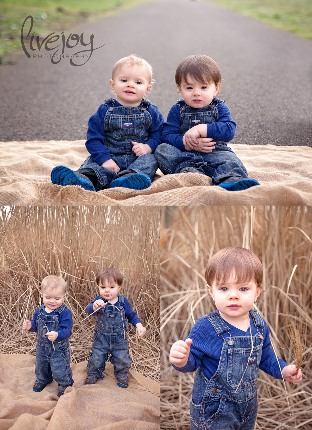 Twin Boys 1 Year Session | LiveJoy Photography