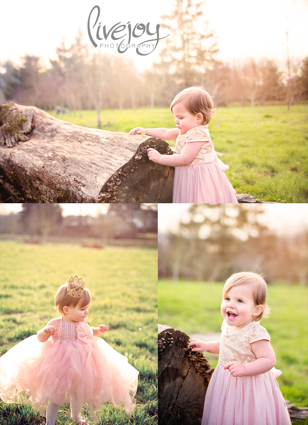1 Year Baby Photography | Salem, Oregon | LiveJoy Photography