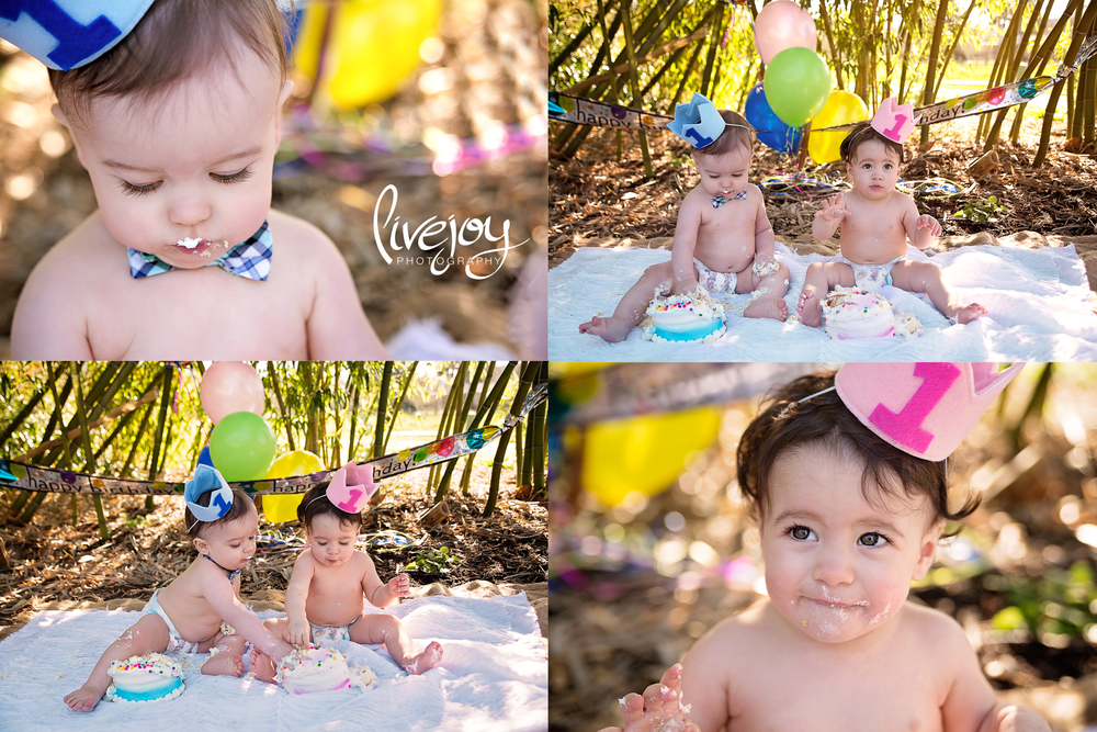 Twin 1 Year Cake Smash Photos | Brother and Sister | Oregon LiveJoy Photography