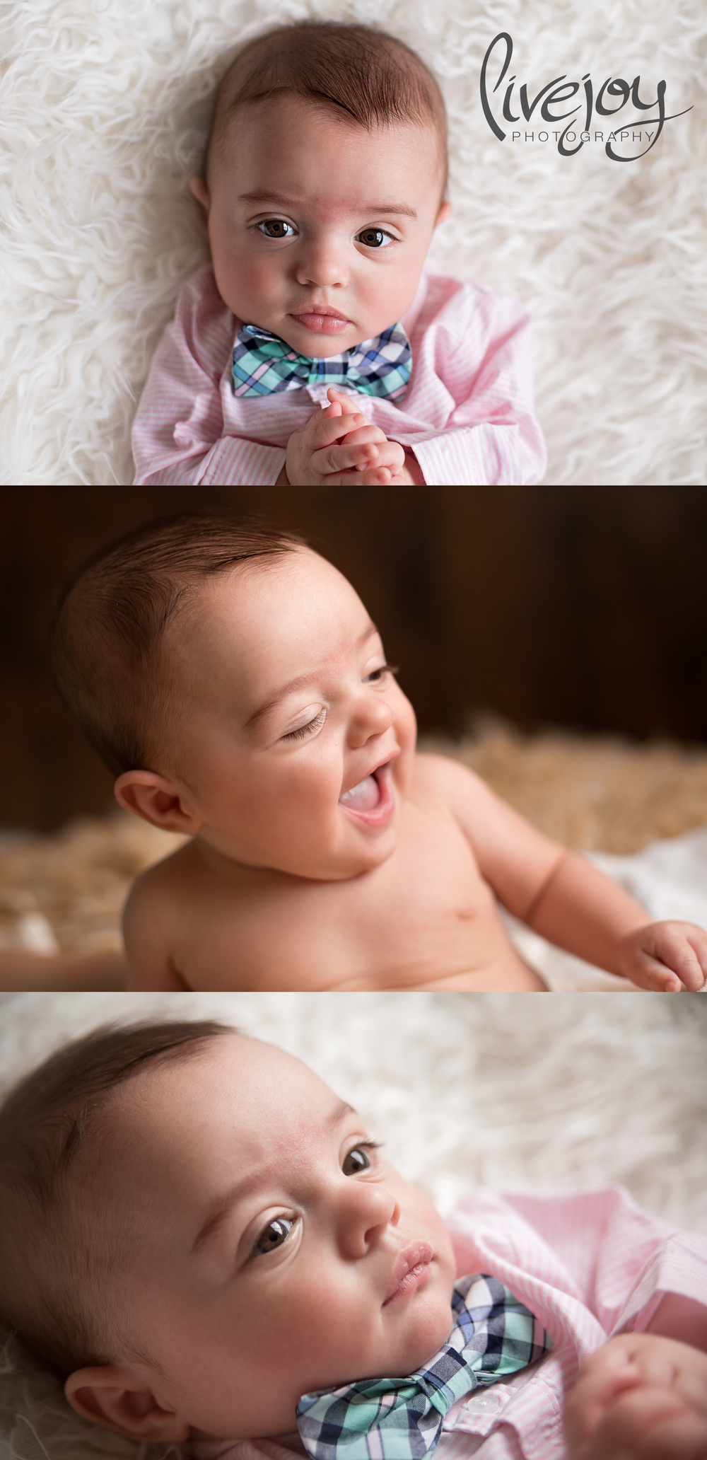 6 Months Baby Photos | Oregon | LiveJoy Photography