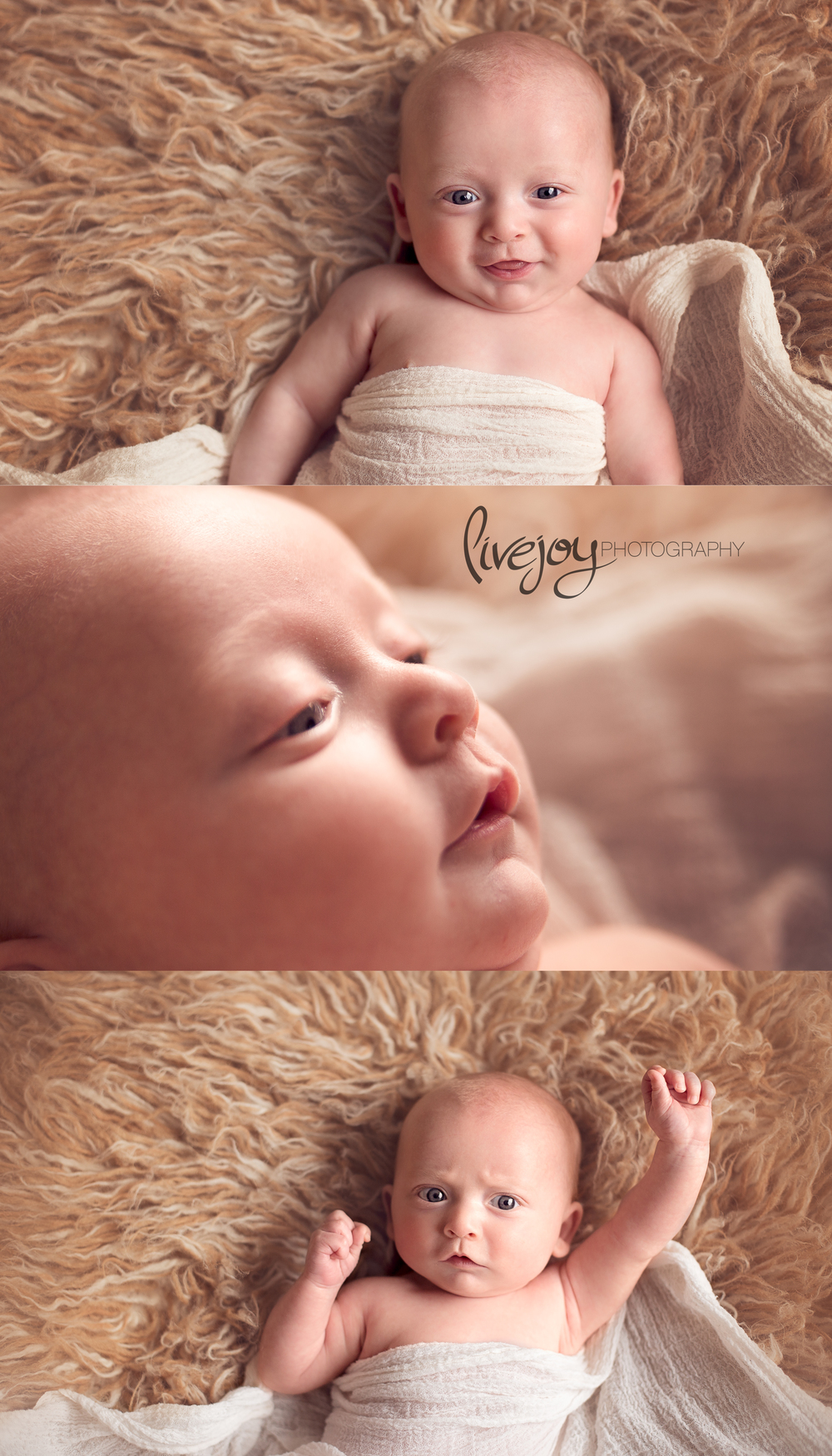 Baby Photos | LiveJoy Photography