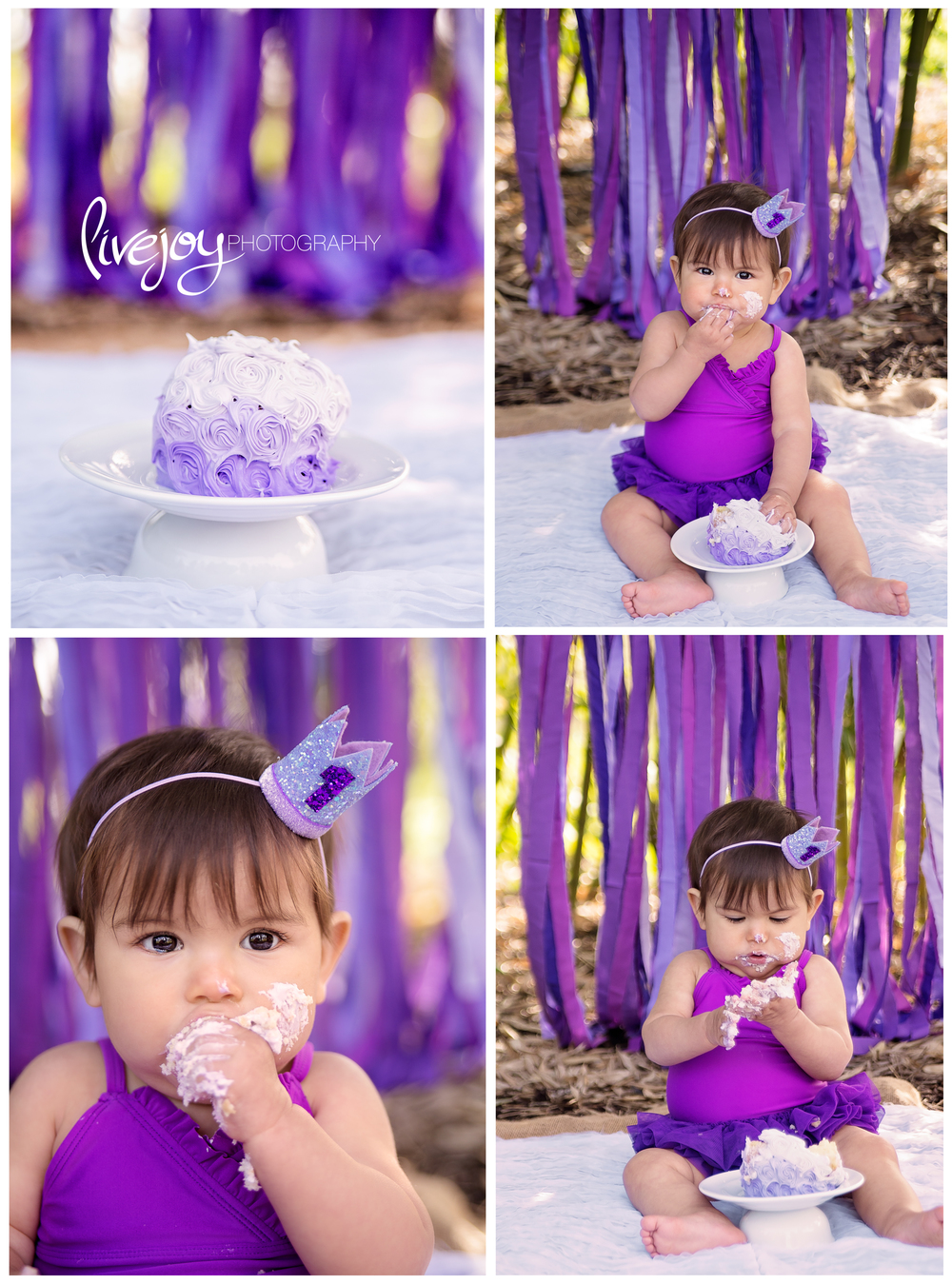 1 Year Cake Smash | Purple | Oregon | LiveJoy Photography
