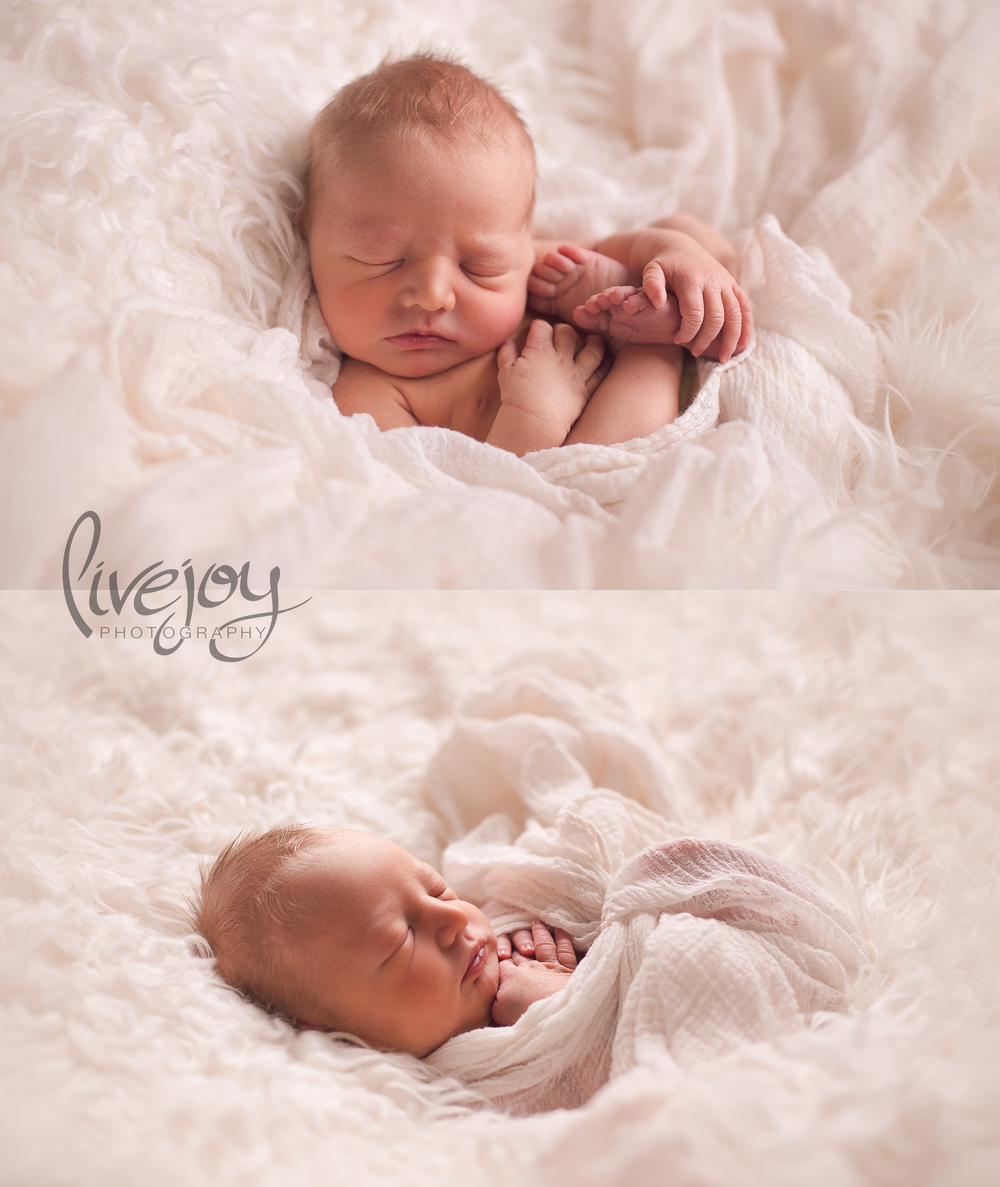 Newborn Photography Salem, Oregon | LiveJoy Photography