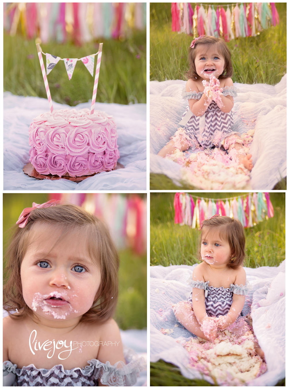 1 Year Cake Smash | LiveJoy Photography | Oregon