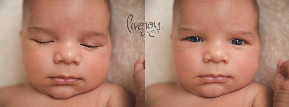 One Month Baby Photography | LiveJoy Photography | Oregon