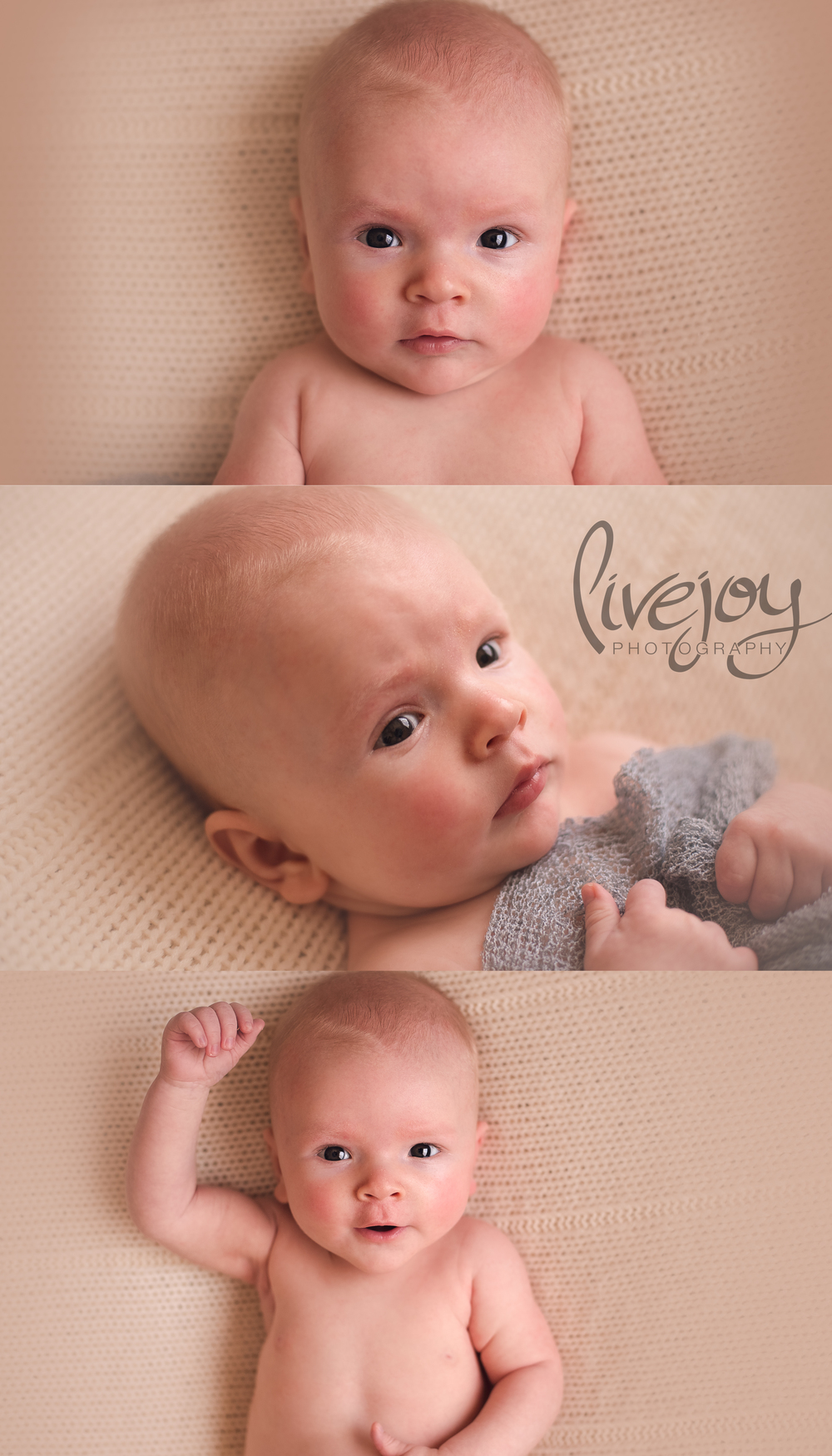 3 Month Baby Boy | Oregon | LiveJoy Photography