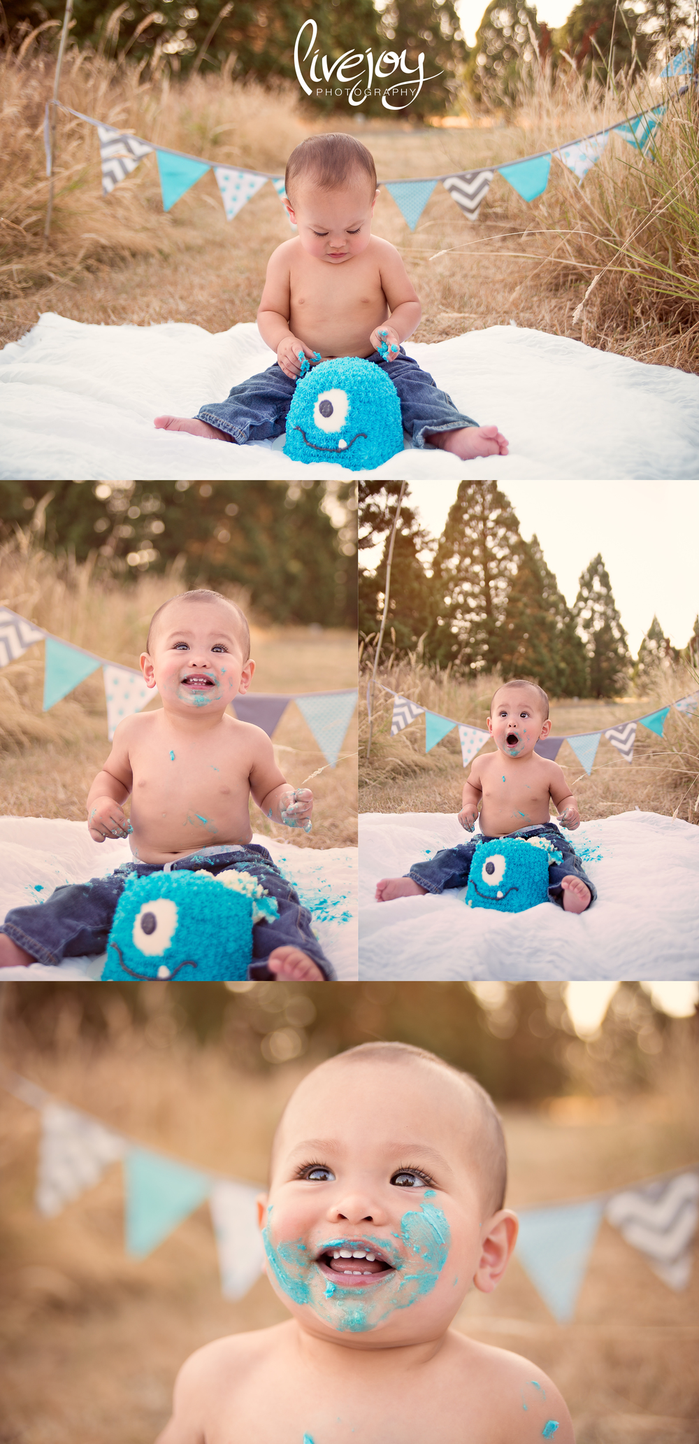 One Year Baby Boy Cake Smash | Salem, Oregon | LiveJoy Photography