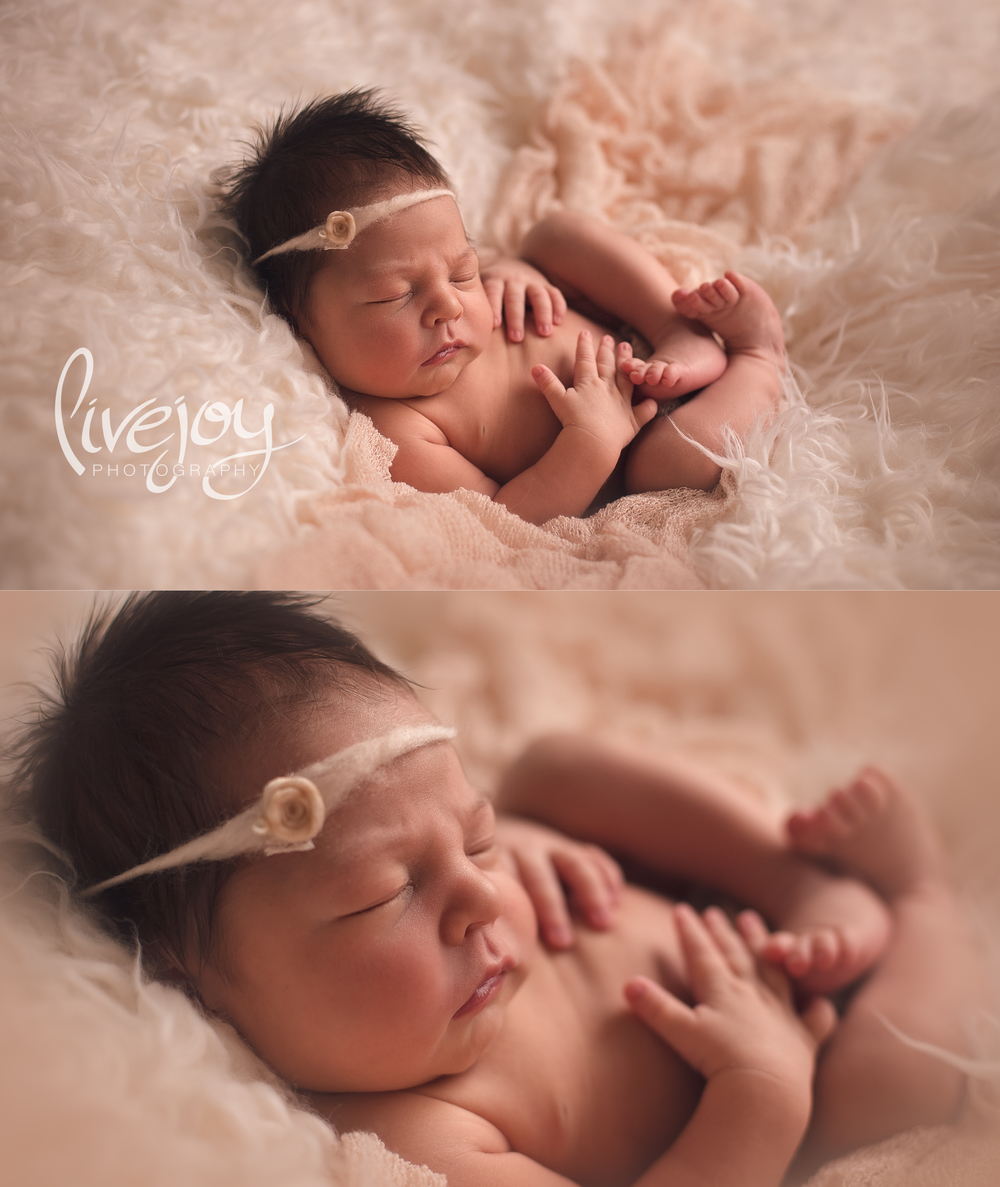 Newborn Photography | Salem, Oregon | LiveJoy Photography