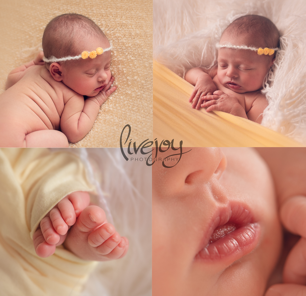 Newborn Photography | LiveJoy Photography yellow | Oregon