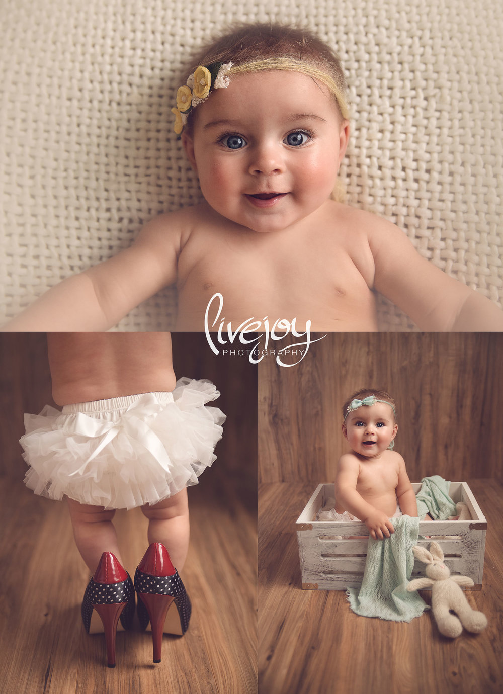 Six Month Photos Studio - Oregon | LiveJoy Photography