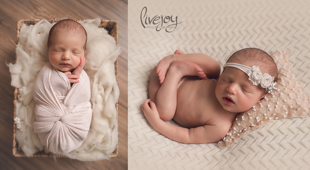 Newborn Photography | Oregon | Livejoy Photography