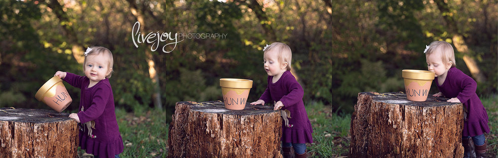 1 Year Old Pooh Photography | Oregon | LiveJoy Photography