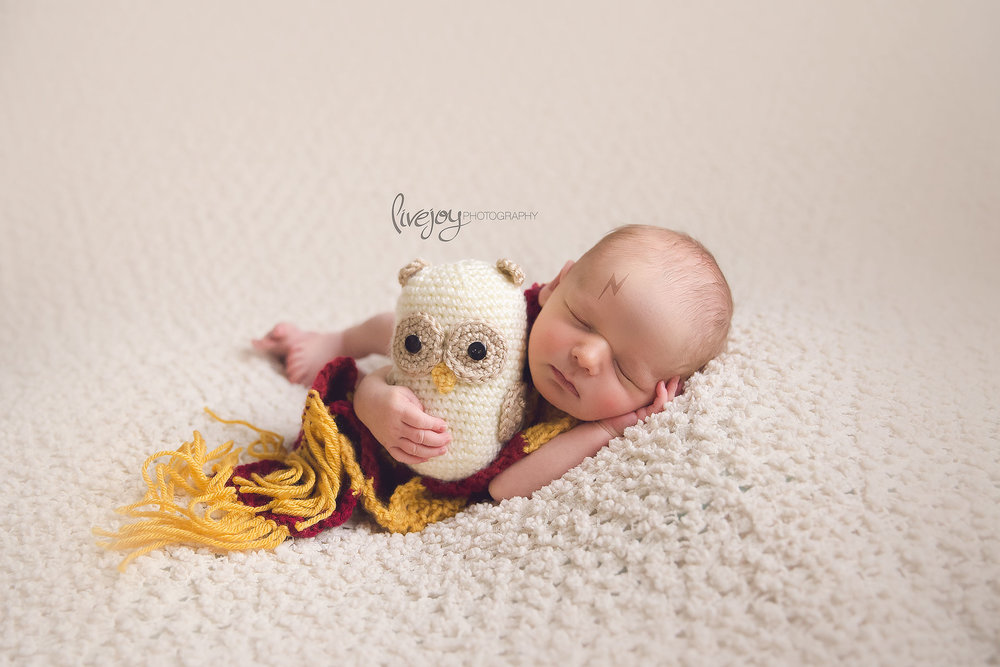 Newborn Photography Harry Potter | Salem, Oregon | LiveJoy Photography