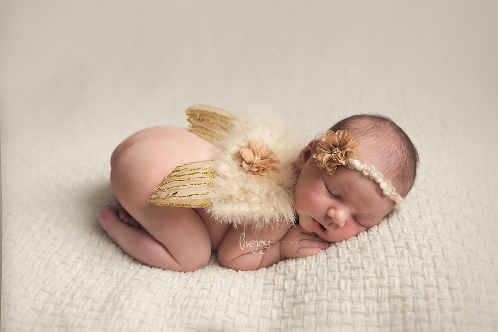 Newborn Photography Angel Wings | Salem, Oregon | LiveJoy Photography