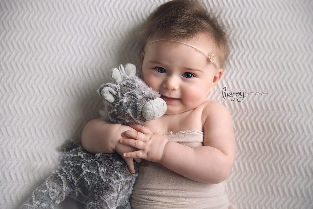 Baby Photography - 6 Months - LiveJoy