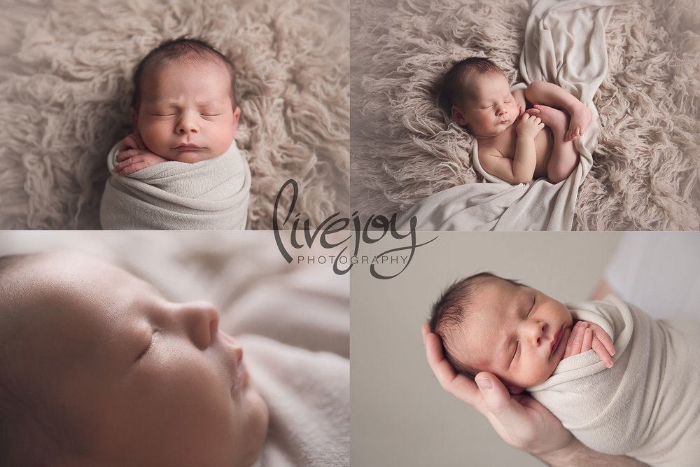 Neutral Color Newborn Photos | Oregon | LiveJoy Photography