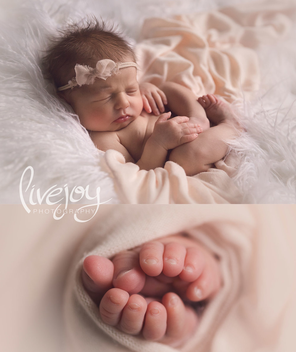 Newborn Girl Photography | LiveJoy Photography | Oregon